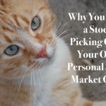 Why You Need a Stock Picking Cat! – Your Own Personal Stock Market Guru
